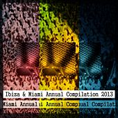 Ibiza & Miami Annual Compilation 2013 (The Best of Dance 2013 for DJs) by Various Artists