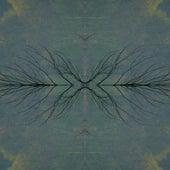 Wavelength | Instrumentals, Vol. 12 by Various Artists