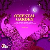 Oriental Garden, Vol. 10 von Various Artists