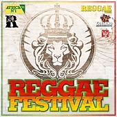 Reggae Festival de Various Artists