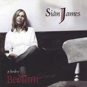 Y Ferch o Bedlam by Siân James