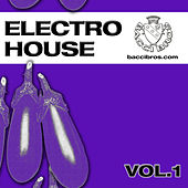Electro House Vol.1 by Various Artists