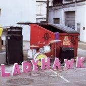 Fight For Anarchy by Ladyhawk