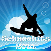 Schneehits 2014 by Various Artists