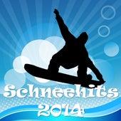 Schneehits 2014 de Various Artists
