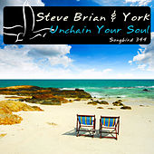Unchain Your Soul by Steve Brian