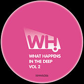 What Happens in the Deep Vol 2 de Various Artists