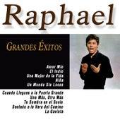 Grandes Éxitos de Raphael de Raphael