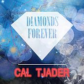 Diamonds Forever by Cal Tjader