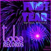 First Year de Various Artists