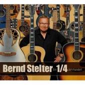 Ein 1/4 Jahrhundert von Bernd Stelter