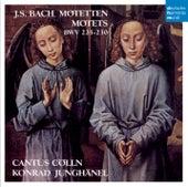 Bach Motets de Cantus Cölln