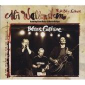 Blues Culture de Abi Wallenstein