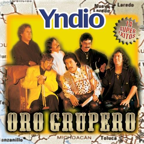 Oro Grupero by Yndio
