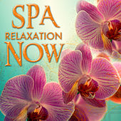Spa Relaxation Now by New Age Music