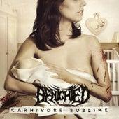 Carnivore Sublime de Benighted