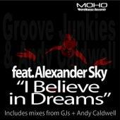 I Believe In Dreams by Groove Junkies