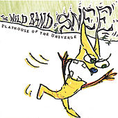 Playhouse of the Universe by The Wild Band of Snee