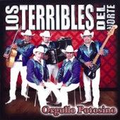 Orgullo Potosino by Los Terribles Del Norte