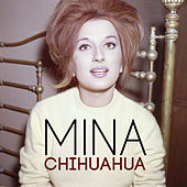 Chihuahua von Mina