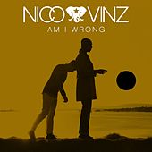 Am I Wrong di Nico & Vinz
