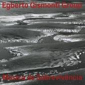 Musica De Sobrevivencia by Egberto Gismonti