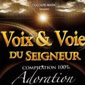 Voix & voie du seigneur, vol. 3 (Compilation 100% adoration) de Various Artists