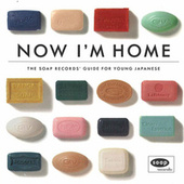 Now I'm Home - The Soap Records Guide de Various Artists