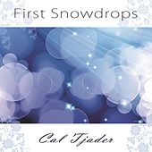 First Snowdrops by Cal Tjader