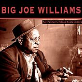 The Fantastic Songs Masterpieces de Big Joe Williams