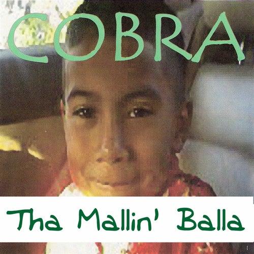 Tha Mallin' Balla by Cobra