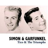 Tico & The Triumphs de Simon & Garfunkel