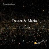 Fireflies by Dexter