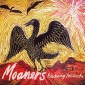 Black Wing Yalobusha by The Moaners
