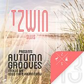 T Zwin Autumn Grooves 2013 - EP von Various Artists