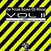 The Future Sound Of House Vol 2 - EP de Various Artists