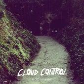 Moonrabbit by Cloud Control
