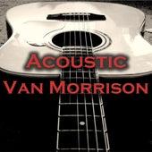 Acoustic Van Morrison de Wildlife