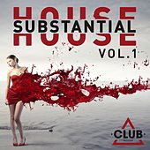 Substantial House, Vol. 1 by Various Artists