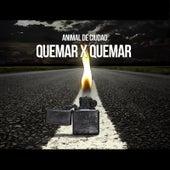Quemar X Quemar by Animal de Ciudad