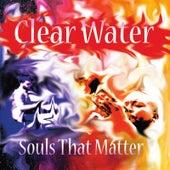 Souls That Matter by Donald Malloy