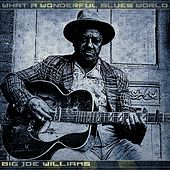 What a Wonderful Blues World de Big Joe Williams
