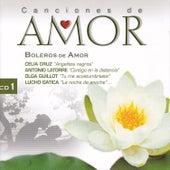 Canciones de Amor: Boleros de Amor 1 by Various Artists