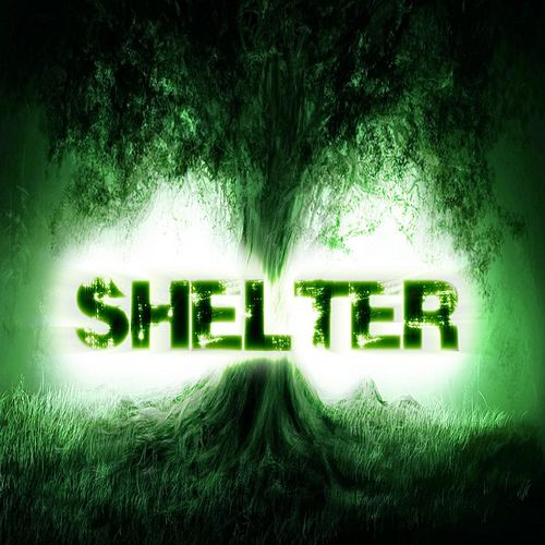 Playing the Victim by Shelter