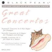 Great Baroque Concertos by conductor Louis de Froment