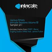 Intricate Sessions, Vol. 1 (Sampler, Pt. 1) by Various Artists