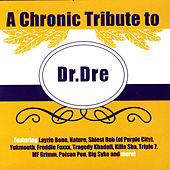A Chronic Tribute To Dr. Dre de Various Artists
