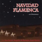 Navidad Flamenca - en Dinamarca by Navidad Flamenca