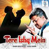 Tere Ishq Mein - Single von Sabri Brothers