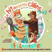 Le hit des petits câlins (25 classiques + les versions instrumentales pour apprendre à chanter) de Clémentine